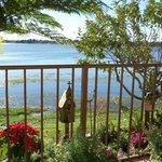 Außenanlage mit Blick auf den See