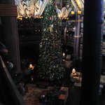 Tree in the Lodge