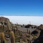 Ilha Incahuasi - em pleno deserto de sal