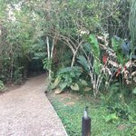 Path to the cabana