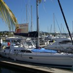 Indian Summer Flagship to Red Dolphin Sailing Charters