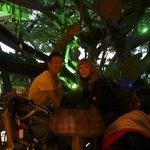 Onder de boom eten