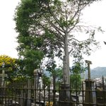 Cemitério