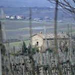 winter in Tuscany looking over La Falconara.