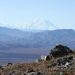 View of Mt. McKinley from the top of Mount Margaret