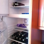 Fridge in apartment - plenty of room for beer