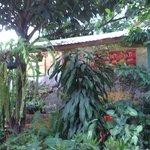 Los jardínes