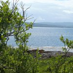 Coastal view on bird watching tour