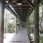 wooden walking paths to the rooms