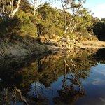 Crayfish Creek at low tide