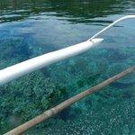 Snorkeling is unnecessary around Mahaba :)