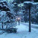 Winter wonderland at the cabins!