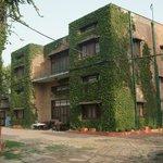 Mrs Bandari's Guesthouse (Amritsar) - back garden