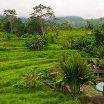 sidemen view from abian ayu