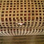 Torn Sofa Cushion