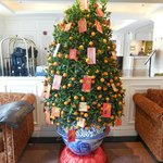 Tet Kumquat tree in the foyer