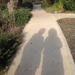 Me & My Shadow strolling through the kibbutz