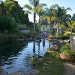 Photo de Avalon Resort