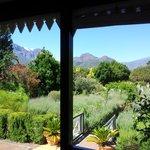 uitzicht vanaf veranda op achtertuin
