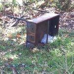 vieux meuble laissé dans le jardin