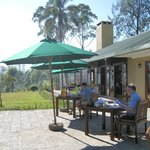 Breakfast, lunch or afternoon tea on the patio