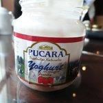 Esse iogurte é uma delícia....procurei aqui no Brasil mas não encontrei!