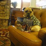 Jack checks out the happenings in the Ruidoso Visitor Guide while warming himself by the Lobby F