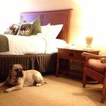 Big.....comfy......roomy bedroom
