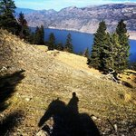 view of Okanagan Lake during a trail ride.