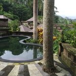 Private pool from room