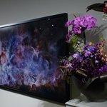 Carina Nebula by Michael Benson