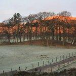 Winter hilltop