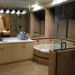 Master bathroom, really nice
