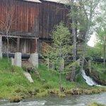 creek side across Butte Creek