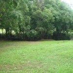 Exclusive Eco site 4 bottom level