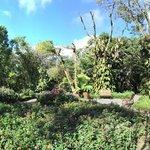 Gardens !