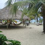 Photo de Westwind Hotel on the Beach