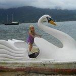 bote en forma de cisne(no funcionba)