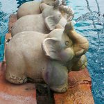 the elephant statues on the pool