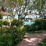Gardens and Pool beyond