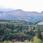 From Fairbanks to Denali (7)