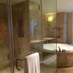 Huge shower and spa