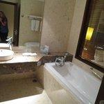 tub with shower sprayer