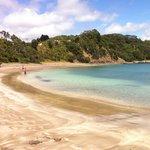 Tauwhara Bay (near Otamure Bay)