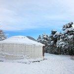 sous la neige comme en mongolie