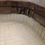 tegels en hout voorzien van schimmels