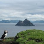 Skellig and Puffin