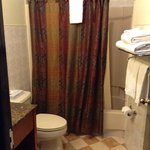 Spotless Bathroom with Hairdryer