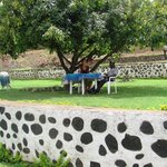 The beautiful garden at Kisoro Tourist Hotel
