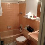 Small bathroom with no horizontal space.